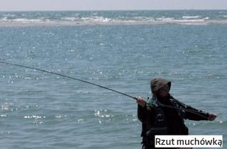 Morskie wędkowanie - Mucha na Morzu