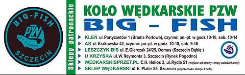 Big Fish Szczecin Baner