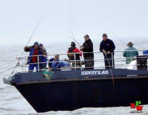 Morskie Mistrzostwa Koła Big Fish -