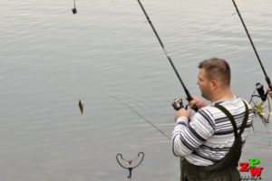 Big Fish - ZAWODY GRUNTOWE – PARAMI