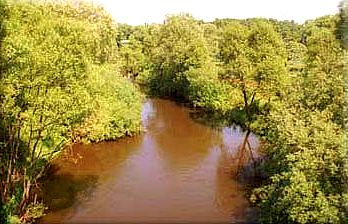 Rzeka Ina szlak kajakowy -