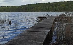 Łowisko Chojnica - Zezwolenie